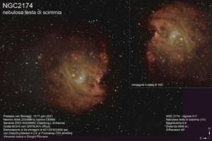 NGC 2174 – nebulosa testa di scimmia